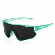Cateye A.R. 1.5 運動太陽眼鏡|偏光鏡|單車風鏡