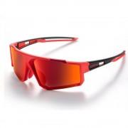 Cateye A.R. III 運動太陽眼鏡|偏光鏡|單車風鏡