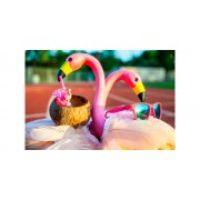 Goodr Running Sunglasses - Flamingos on a Booze Cruise