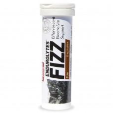 Hammer Nutrition Endurolytes Fizz 電解片13片