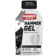 Hammer Nutrition Energy Gel 能量膠