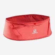 Salomon Pulse Belt |跑步腰帶