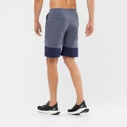 Salomon XA TRAINING SHORT MS |快乾短褲|優閒運動服裝|男裝